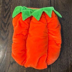 Doggie Pumpkin Costume